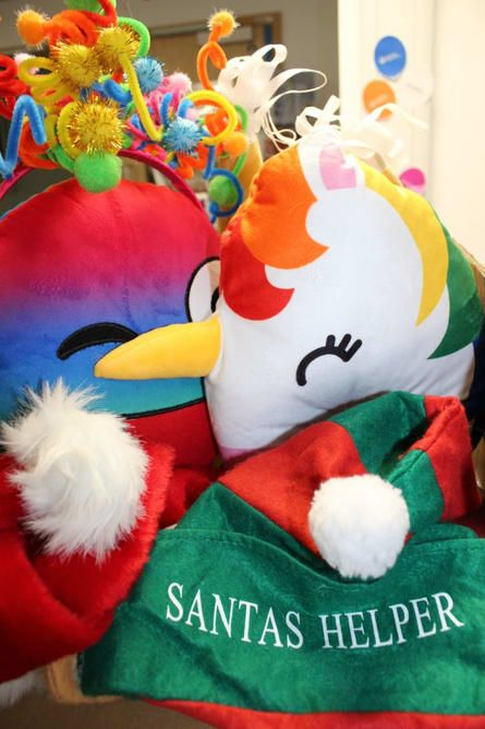 Santa's Helper Christmas Toy, Southampton Hospitals Charity